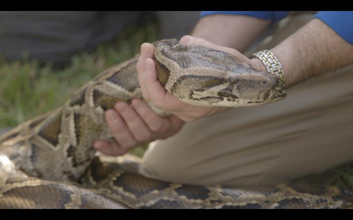 python1-e1363207893588