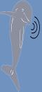 Dolphin Bioacoustics