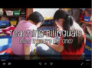TeachingBilingualsFrame